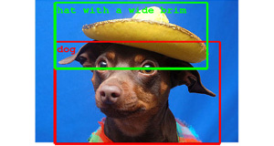 dog-with hat